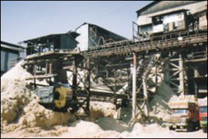 Return Bagasse Carriers and Elevators